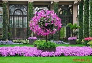 Сады Дюпона