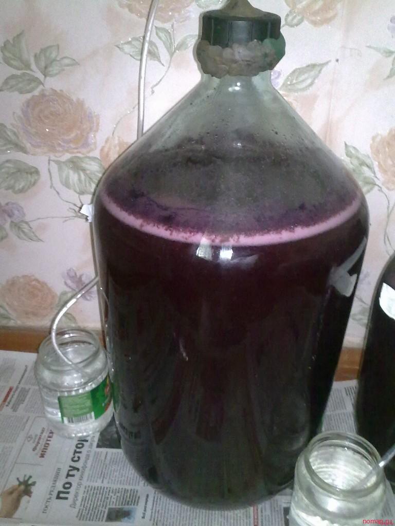 изготовление виноградного вина Ny5.ru