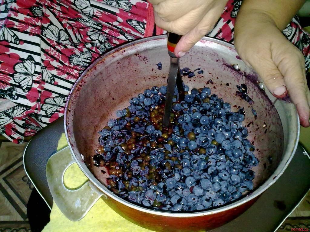 Как сделать вино без сахара из винограда в домашних