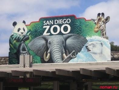Зоопарк Сан Диего
