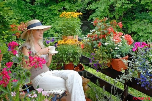 Растения для выращивания на балконе и уход за ними