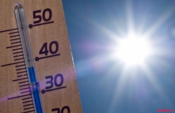как прежить жару