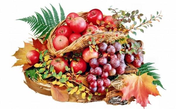 Осенние фрукты как косметика для лица